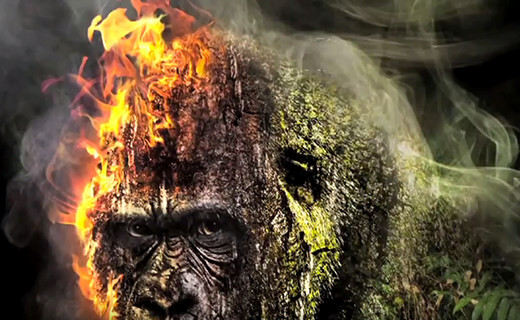 Stop destroying the Rainforest - Photoshop Artwork von Thomas Schiffmann Youtube Screenshot 4